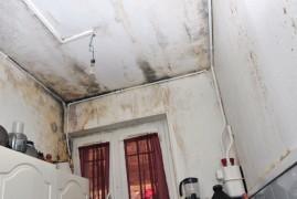 Le fléau des champignons et moisissures dans la maison