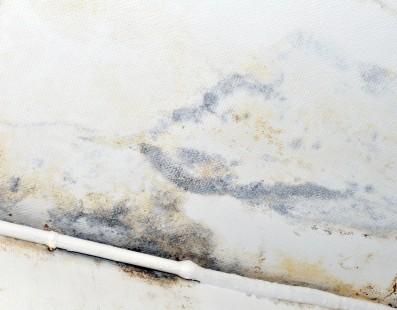 Que faire en cas de problème d'humidité au plafond ?