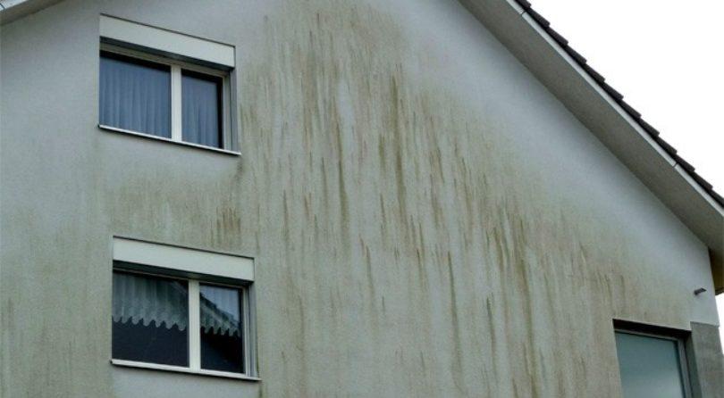 Protégez votre façade contre l'humidité